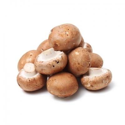 Mushroom Brown Holland / Oman